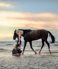 Photo Horse Fashion, Animals And Pets, Horses, Pets, Horse
