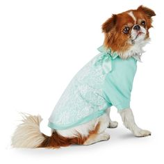 Smoochie Pooch Blue Lace Dog Sweater❤️
