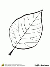 Free Printable Leaf Coloring Pages For Kids ClipArt Best ClipArt