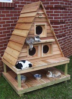 Картинки по запросу сделать домик для кошки на улице