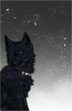 Wolf's Rain .:Blue:. by =WhiteSpiritWolf on deviantART