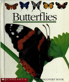 Butterflies by Gallimard Jeunesse (Publisher); Delafosse, Claude; Héliadore, ill  Published 1997 Topics Butterflies, Moths, Toy and movable books, Butterflies, Toy and movable books SHOW MORE   Describes the physical characteristics, life cycle, and different kinds of butterflies. Features see-through pages that change the pictures