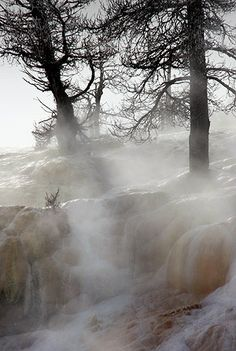 Winter photo tours of Yellowstone and Tetons