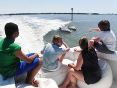 Sunset Ride located in Fort Myers Beach is a great way for the family to get a close-up look at marine wildlife!