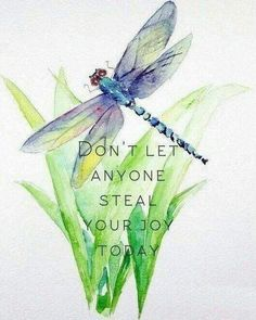 Quotes life wisdom dont let ideas Dragonfly Quotes, Dragonfly Art, Dragonfly Tattoo, Dragonfly Painting, Good Thoughts, Positive Thoughts, Positive Quotes, Great Quotes, Me Quotes