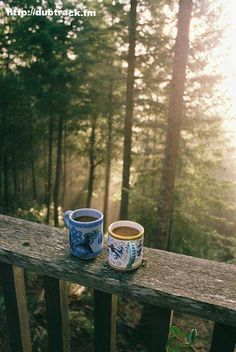 Where I could wake with my cuppa to start the new day.