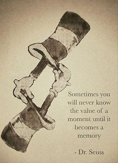 Sometimes you will never know the value of a moment until it becomes a memory. -Dr. Seuss  / Image via dumpday.com / #inspiringquote