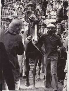 Not a Tony Leonard photo, but a photo of Tony Leonard, photographing Genuine Risk's walk into the winner's circle after the Derby. Beautiful Horses, Animals Beautiful, Derby Winners, Sport Of Kings, Thoroughbred Horse, Racehorse, Horse Stables, Courses, Kentucky Derby