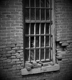 https://flic.kr/p/t3JJNz | Jailed | Willard Asylum for the Insane