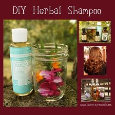 How To Make Extraordinary Homemade Herbal Shampoo | Health & Natural Living