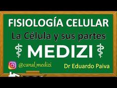 Cátedra sobre La fisiología celular, varios vídeos en una lista de reproducción