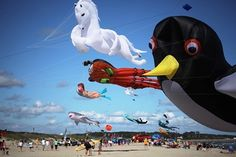 Cape Fear Kite Festival | Official Tourism Site