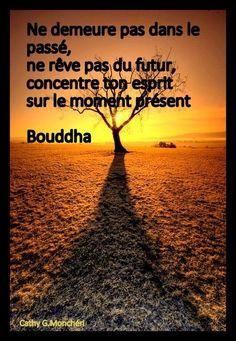 inspiration Image Citation, Plus Belle Citation, Trust No One, Beautiful Words, Proverbs, Positive Quotes, Buddha, Zen, Inspirational Quotes