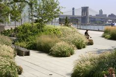 decking in public space (New York? Which park, anyone who knows?)