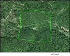 How to Buy Land Very Cheaply, tips for buying rural land, homesteading, homestead Homestead Land, Homestead Survival, Survival Prepping, Build Your Own House, Sell Your House Fast, Cheap Land For Sale, Abandoned Property, How To Buy Land, Sustainable Living