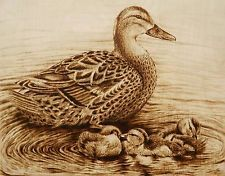 "ORIGINAL DRAWING-PYROGRAPHY/WOODBURNING-BIRD-DUCK AND DUCKLING ""FAMILY SWIM"""