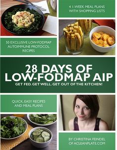 Book Review: 28 days of Low FODMAP AIP by Christina Feindel | Heal Me In The Kitchen