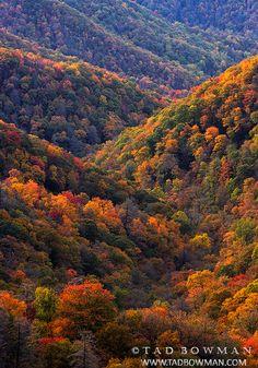 Smoky Mountains Colors photo