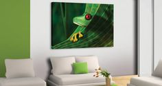 My Frog canvas
