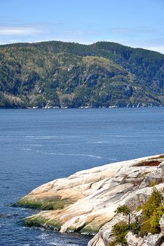 Waiting for whales / Tadoussac / Quebec / Canada