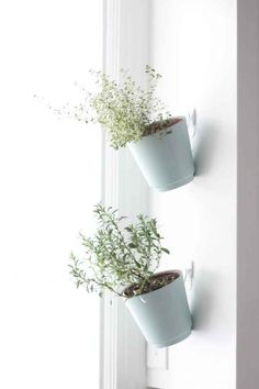 Mount a vertical herb garden next to your kitchen window with a few small hooks.