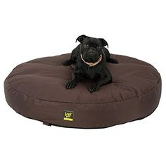 FrontPet Chew Resistant Dog Bed  36 Round Chew Resistant Memory Foam Dog Bed Perfect For Puppies -- Find out more about the great product at the image link.