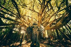 Shiva Tree Temple Photo by Andrew Hara -- National Geographic Your Shot