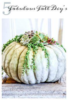 Five fabulous fall diy's to make from burlap, pumpkins,acorns, pinecones and Indian corn. Sweater Pumpkins, Fall Pumpkins, Burlap Pumpkins, Fall Home Decor, Autumn Home, Autumn Fall, Indian Corn Wreath, Diy Pumpkin, Pumpkin Ideas