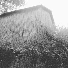 Ways to make yourself feel short... Old barn
