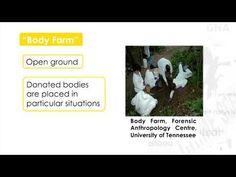 Forensic Science (Hi-res) - 3.1.2 - Decomposing Bodies I Putrefaction - YouTube