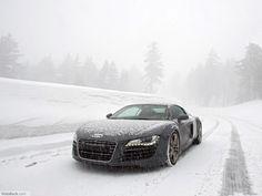 R-8  Snowy