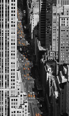 NYC. Yellow Cabs on 5th Avenue