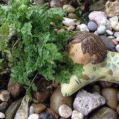 #mindfulness#achtsamkeit#winter#gardening#garten#natur#nature#naturelovers#landliebe#landlust#bauerngarten#gartenglück#gartenliebe#wachstum##growth#floral#structure#life#leben#kreislauf#neuanfang#garden#plants#pflanzen#ceramics#keramik#stone#steine#smell#riechen