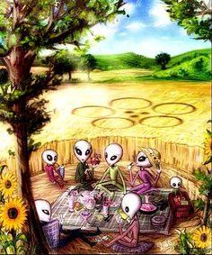 The Crop Circles: Would Even of Extraterrestrial Origin? Ancient Aliens, Aliens And Ufos, Crop Circles, Grey Alien, Alien Queen, Alien Concept, Psy Art, Space Aliens, Alien Worlds