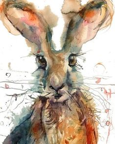 'Hare' by Sarah Weyman. She is a self taught artist living and working in Somerset UK and paints animals wildlife landscapes and still life. She is inspired by colour texture the character of animals the countryside she lives in and also the simplicity of objects. #watercolor