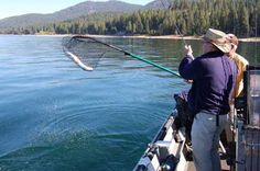 14 Best Fishing Spots of Northern California images in 2016