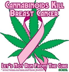 Cannabinoids kill breast cancer.