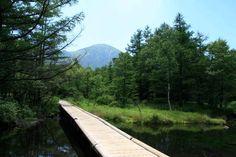御泉水自然園 - Google検索