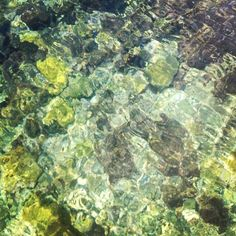 The Mediterranean... clear waters in l'Escala, Alt Empordà, photographed while sourcing anchovies