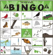 Nature Bingo & Scavenger Hunts Last winter we ask our readers what their favorite snowy day activities were. One recommendation was to play outdoor bingo with Mass Audubon's Winter Walk … Tiger Scouts, Cub Scouts, Girl Scouts, Scout Mom, Nature Activities, Spring Activities, Activities For Kids, Outdoor Activities, Girl Scout Camping