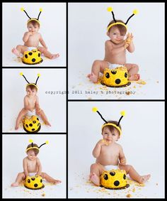 a busy bee cake smash | frisco texas cake smash photographer » haley b photography blog