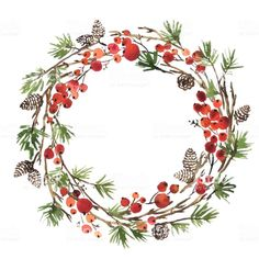 Watercolor Christmas wreath of fir tree branches, pine cones and… Aquarell-Weihnachtskranz aus Tannenzweigen, Tannenzapfen und Holly Berries – Royalty-free Christmas Lager Illustration Watercolor Christmas Cards, Christmas Drawing, Christmas Paintings, Watercolor Cards, Kids Watercolor, Watercolor Paintings, Illustration Noel, Christmas Illustration, Illustrations
