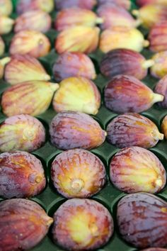 Fresh Figs - California Fig Commission