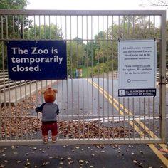Government shutdown's 'saddest photo' Poor little guy!