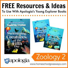 Apologia Flying Creatures Bird Nest Study - Live and Learn ...