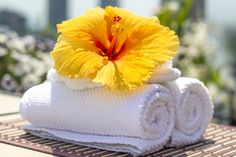 One of the greatest home installations that you can do is installing the inflatable hot tubs. There are different types of tubs that you can install in your home: there is the static one, a solid one, or the popular inflatable hot tub. Clean Bathtub, Dawn Dish Soap, Ideas Para Organizar, Homemade Cleaning Products, Luxury Towels, Body Wraps, Hibiscus Flowers, Flower Images, Cotton Towels