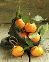 "How to Grow a Clementine Tree in Your House ""Look for trees grafted onto dwarf or semi-dwarf root stocks -- often labeled as patio or container citrus by nurseries. ""Clementine"" grafted to dwarf root stock grows slowly and rarely reaches heights above 5 or 6 feet"""