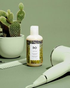 care indonesia R+Co Cactus Texturizing Shampoo 2nd Day Hair, Lipgloss, Natural Waves, Healthy Oils, Lip Care, Lock Screen Wallpaper Iphone, Natural Cosmetics, Commercial Photography, Still Life Photography