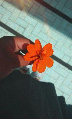 Flor ♥️
