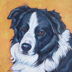 BenAgain the Border Collie by Bethany.